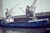 1958 to 1984 - NER - Cargo - 474GRT/680DWT - 59.8 x 9.6 - 1958 Stocznia im Gdanska Lenina, Gdansk, No.B51/09 - 11/84 broken up at Pasajes - Kings Lynn, unloading timber, 04/82.