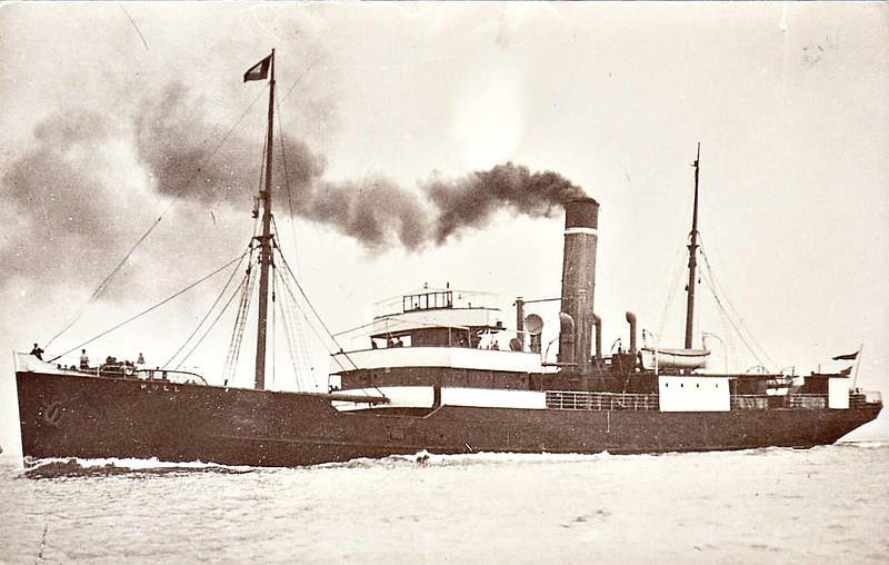 1907 to 1937 - HULL - Cargo - 1132GRT - 77.9 x 11.0 - 1907 Caledon Shipbuilding & Engineering Co., Dundee, No.191 - new to Wilsons/NER Hull - Scandinavia services - 1923 to LNER, 1937 sold to Schiaffino Lines, renamed VILLE DE DJIDDJELLI - 01/56 broken up at La Seyne.