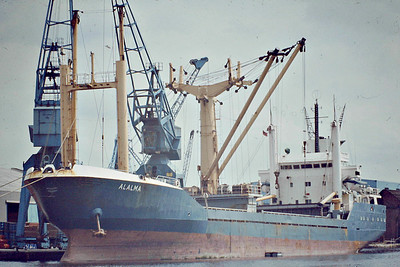 ALALMA () - IMO7707097 - Cargo - 2834GRT/4029DWT - 97.3 x 14.0 - 1978 Astilleros Barreras, Vigo, No.1448 - 02/13, as HILDE G, broken up at Bordeaux - seen here at Goole in July 1982.