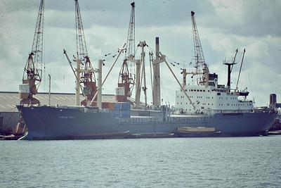 AFRICA PALM (London) - IMO7125328 - Cargo - GBR/13627/72 Warnowwerft, Warnemunde, No.376 - 152.9 x 20.3 - Palm Line - 1998 broken up - Tilbury Docks, 09/81.
