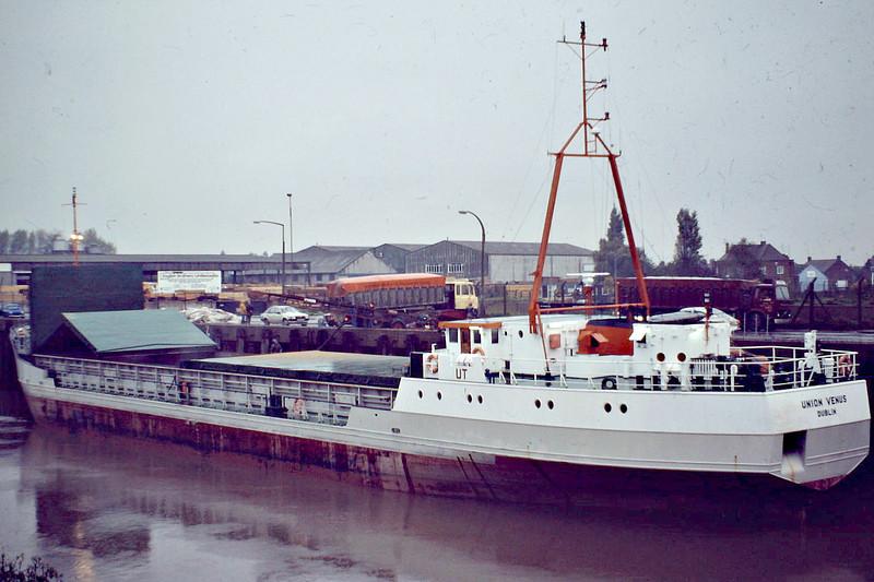 UNION VENUS (Dublin) - UNION VENUS (Dublin) - IMO8012827 - Cargo - IRL/1395/81 Nordsovaerftet, Ringkobing, No.147 - 70.0 x 11.3 - Union Transport Ltd. - still trading as ANCORA (VCT) - Wisbech, loading grain, 10/82.