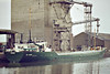 SEA THAMES (Nassau) - IMO7320083 - Cargo - BHS/757/73 Stocznia Tczew, No.B363/01 - 53.5 x 9.1 - Freight Express Seacon - still trading as LAZARUS I (PAN) - Kings Lynn, loading grain in Bentinck Dock, 07/84.