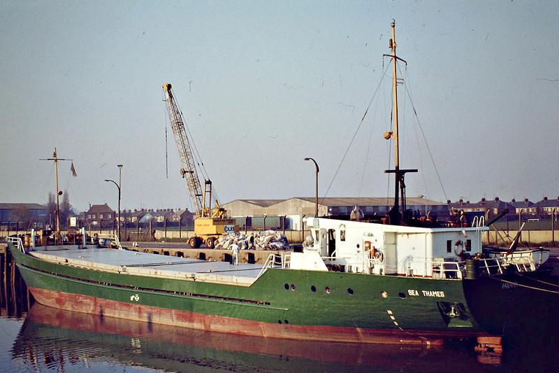 SEA THAMES (Nassau) - IMO7320083 - Cargo - BHS/757/73 Stocznia Tczew, No.B363/01 - 53.5 x 9.1 - Freight Express Seacon - still trading as LAZARUS I (PAN) - Wisbech, unloading fertiliser, 03/82.
