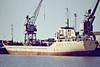 SECURITY (London) - IMO7051931 - Cargo - GBR/2823/71 Richard Dunstob & Co., Hessle, No.877 - 85.0 x 12.8 - FT Everard & Sons - still trading as SEA LION I (LBR) - Kings Lynn, loading grain in Bentinck Dock, 05/84.