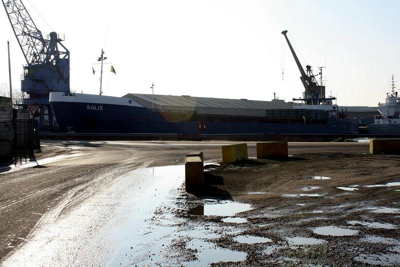 SALIX (St Johns) - IMO8520446 - Cargo - ATG/3020/86 JJ Sietas Schiffswerft, Hamburg, No.987 - 92.1 x 11.5 - Nyki Shipping BV - Kings Lynn, loading grain in Alexandra Dock, 29/01/09.