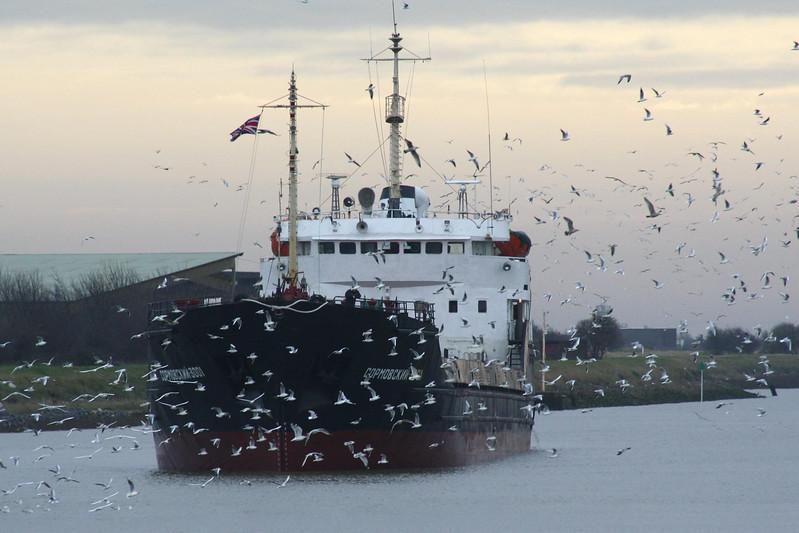 SORMOVSKIY-3001 (St Petersburg) -  IMO7942946 - RUS/3100/81 Ivan Dimitrov Shipyard, Rousse, No.371 - 114.1 x 13.3 - Volga-Neva Shipping - Boston, inward bound to load grain, runs into the middle of Hitchcock flim!, 18/12/08.