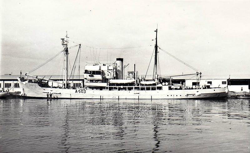 1944 to 1973 - SEA SALVOR (A503) - King Salvor Class Salvage Vessel - 1780DWT - 66.1 x 11.5 - 1944 Goole Shipbuilders, No.391 - 4x20mm - 12 knots - 04/71 decommisoned, 01/73 broken up at Grays.