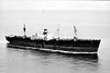 A MITCHELL PALMER - EC2-S-C1 - 7199GRT/10503DWT - 134.6 x 17.3 - 1944 Southeastern Shipbuilding Corpn., Savannah, No.41 - 1951 WAIMEA, 1954 ANNITSA A, 1964 JUSTICE - 05/68 broken up at Kaohsiung - seen here as WAIMEA (HND).