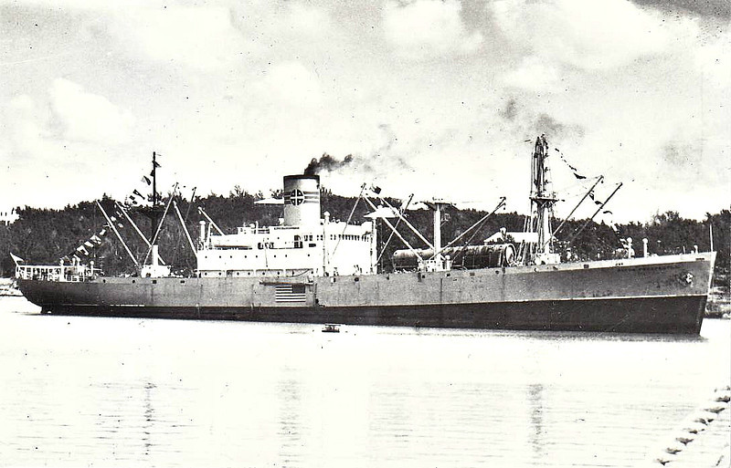 C1-B - 1941 - CAPE ANN - Cargo - 6797GRT/9279DWT - 127.4 x 18.3 - 1941 Bethlehem Fairfield Shipbuilders, Mariners Harbour, No.8016 - 1941 ALCOA PROSPECTOR - 05/07/43 badly damaged by submarine torpedo off Muscat, beyond economical repair, 03/50 broken up at Philadelphia.