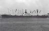 CHELSEA VICTORY - VC2-S-AP3 - 7606GRT/10750DWT - 138.8 x 18.9 - 1945 Oregon Shipbuilding Corpn., Portland, No.1259 - 1946 GRANADERO - 07/75 broken up at Campana.