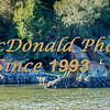 BRAD McDONALD SHIPWRECKS  SPC201607130002c