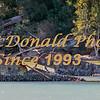 BRAD McDONALD SHIPWRECKS  SPC201607130217