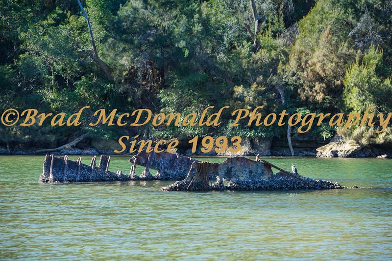 BRAD McDONALD SHIPWRECKS  SPC201607130299