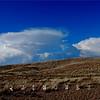 Lake Valley NM