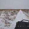 Snow Sojourn - Thunderhead Plains, NM