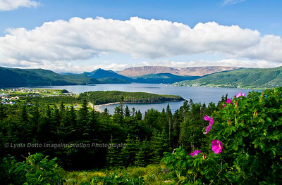 NEWFOUNDLAND - NORRIS POINT Norris Point and Bonne Bay with Tablelands in the background [tablelands_0248]