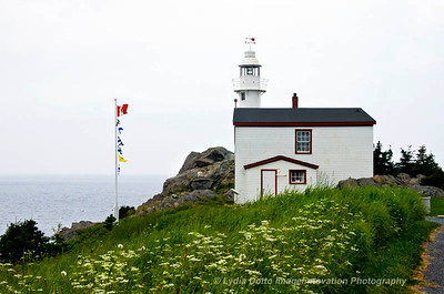 NEWFOUNDLAND - GROS MORNE NATIONAL PARK Lobster Cove lighthouse, built in 1892.  [lighthouse_9903]