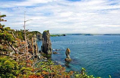 NEWFOUNDLAND - TRINITY BAY Sea stacks seen from the Skerwink Trail, Newfoundland. [skerwink_6927]