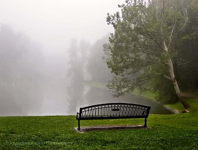 Jackson Park - bench in fog [0002]