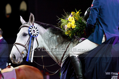 Girts BRICIS - DYNAMIQUE DML @ Tallinn International Horse Show 2014, Young Horses on Sunday. Foto: Kylli Tedre / www.kyllitedre.com