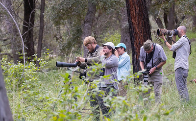 The annual meeting gives us time to catch up with each other and also to share techniques for finding and documenting birds with all of the latest gadgets (thankfully, Tom Johnson gives tips and even tutorials!).