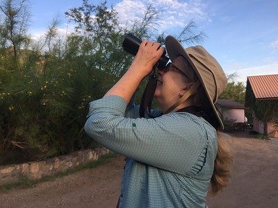 .... including taking goofy photos of each other (here Peg Wallace pretending to see a Zone-tailed Hawk)....