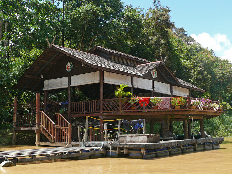 """We'll have meals at our lodge on the banks of the big Kinabatangan.  Behind the lodge, a loop boardwalk takes us through the tangled understory of floodplain forest. <div id=""""caption_tourlink"""" align=""""right""""> [photo © David & Judy Smith]</div>"""