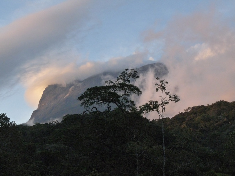 """But it's dramatic Gunung Kinabalu that will be our focus for birding Borneo's highlands.  We should arrive before sunset and settle into our lodgings right in the park, at 5300'. <div id=""""caption_tourlink"""" align=""""right""""> [photo © guide Rose Ann Rowlett]</div>"""