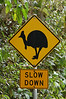 "A traffic sign you would only ever see in Australia...  <div id=""caption_tourlink"" align=""right"">[photo © participant Jack Brown]</div>"
