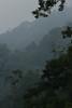 "Tam Dao National Park. <div id=""caption_tourlink"" align=""right""> [photo © guide Dave Stejskal] </div>"