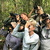 """When friends and family say """"What do you do on these birding trips?"""", the simplest answer may be to show them a page of Cotingas--birds that have such spectacularly varied plumages, adornments, behaviors, and vocalizations that some say they're as riveting to watch as New Guinea's birds-of-paradise. Welcome to the latest <a href=""""https://fieldguides.smugmug.com/SHOWS/Birds-of-a-Feather/"""" target=""""_blank""""><span class=""""slideshow_tourlink3""""><b>BIRDS OF A FEATHER</b></span></a>, by the way. We hope you enjoy this New World adventure, full of memories (and notions for the future!). Photo by guide Tom Johnson."""