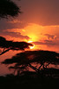 "Sunrise at Ndutu Lodge <div id=""caption_tourlink"" align=""right""> [photo © guide Richard Webster]</div>"