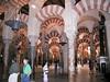 Inside the Mezquita in Córdoba.