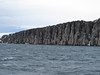 Alkenfjellet -- home to a large Thick-billed Murre colony (Photo by guide John Coons)