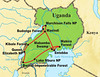 The Field Guides Uganda tour route map: our itinerary covers all the important hotspots in search of Shoebill, Rift endemics, Gorillas, and more. Guide Phil Gregory's captioned images from the 2010 tour he co-led with Terry Stevenson follow...enjoy!