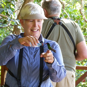 In the 1960s, Lisa Salmon of Anchovy, Jamaica began training hummingbirds to perch on her finger to drink nectar. Sixty years later, her property, called Rocklands, remains a sanctuary for birds, including many eager Red-billed Streamertails (here one without streamers), and a nice spot to visit when our tour nears Montego Bay. Photograph (of participant Nancy Buck) by guide Eric Hynes.
