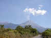 "Volcan de Fuego again, doing its usual thing of spouting off steam. This photo shows some of the drier forest in the lower areas of this part of Colima. <div id=""caption_tourlink"" align=""right""> [photo © guide Chris Benesh]</div>"