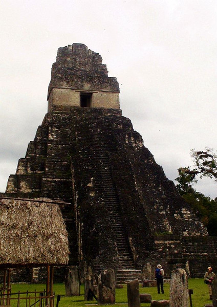 Our itinerary also features an optional pre-trip to the fabulous Mayan site of Tikal in the northeastern corner of the country, where we'll have the chance to explore the ruins and add some great birding. (Photo by guide Jesse Fagan)