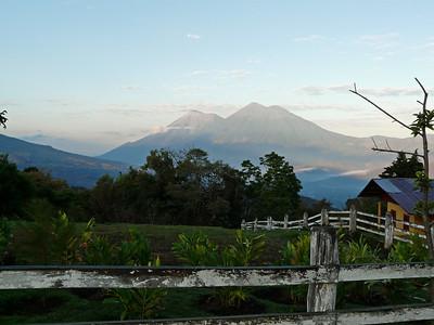 Guatemala: Shade-grown Birding