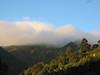 "This photo by participant Teresa Santos captures the beauty of La Tigra nicely.  Clouds drape the pine-oak forest.<div id=""caption_tourlink"" align=""right""> [photo © participant Teresa Santos]</div>"