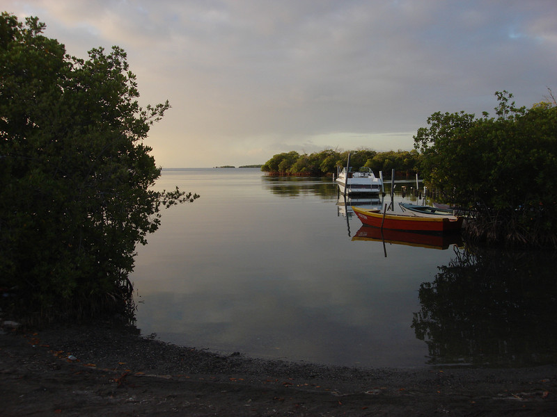 Dawn at La Parguera on the southwest coast of Puerto Rico: the best site to see Yellow-shouldered Blackbird. (Photo by guide Dan Lane)