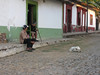 "Copala: now this is living. <div id=""caption_tourlink"" align=""right""> [photo © participant Diane Henderson]</div>"