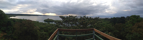 The view from the tower at Tranquilo Bay (Photo by guide Jesse Fagan)