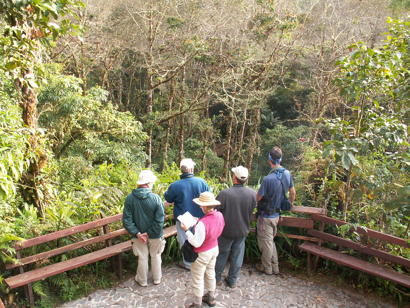 "Birding at Cabin 2, Los Quetzales <div id=""caption_tourlink"" align=""right""> [photo © participant Marcy Clements]</div>"
