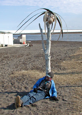 "With all of this great birding and excitement one would think there is no time to rest. Not so, here guide Jan Pierson takes a well-deserved break beneath one of the palm trees of Barrow. Well-deserved because it may be 3 AM—remember that here the sun does not set in summer. Twenty-four hours of daylight has its challenges, but it is a unique experience. If you are still thinking about the palms in Barrow and don't believe me, well, take the tour and see. <div id=""caption_tourlink"" align=""right""> [photo © guide Alvaro Jaramillo]</div>"