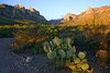 "Chiricahuas at sunrise near Portal <div id=""caption_tourlink"" align=""right""> [photo © participant Gregg Recer]</div>"