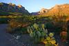 "The Chiricahuas at sunrise near Portal<div id=""caption_tourlink"" align=""right"">[photo © participant Gregg Recer]</div>"