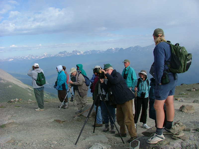 "Here our group is atop Whistlers Mountain in Jasper National Park. Before you think, no-no, mountain climbing is not for me, we should tell you that we arrive there by a quick tram ride, so there is little climbing involved. The quest up here above the tree line is the bird in our next image...<div id=""caption_tourlink"" align=""right"">[photo © participant Pat Newman]</div>"