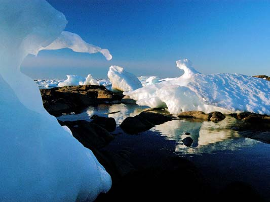 """….the ice floes get caught on the rocks allowing for a different vista with each visit. At Churchill, comfortable accommodations and good food just add to the adventure of being in the far north. It is from here…<div id=""""caption_tourlink"""" align=""""right""""> [photo © participant Cliff Heinsel]</div>"""