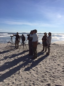 One of our 2016 groups out birding the beach with guides Megan Crewe and Doug Gochfeld. Photo by participant Cheryl Chessick.